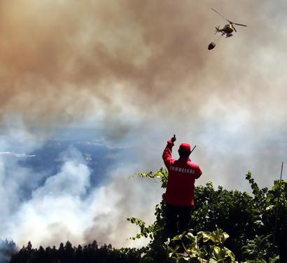 Incêndio na Serra do Caramulo