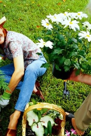 Instrumentos de jardinagem