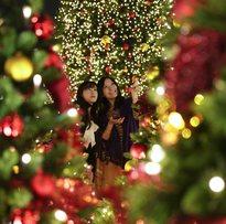 """Seia vai ter """"Aldeia Natal"""" tradicional onde a figura do Pai Natal não entra"""