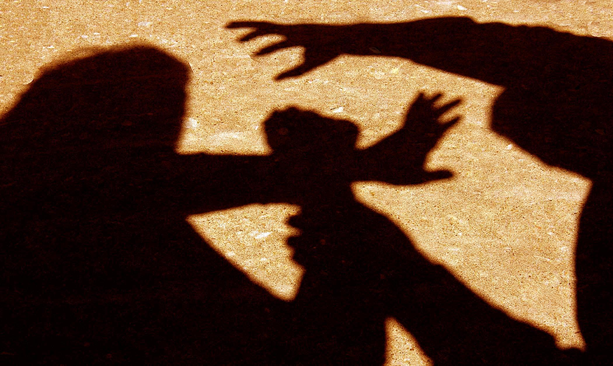Relatório da comissão multidisciplinar sobre violência doméstica conhecido para a semana